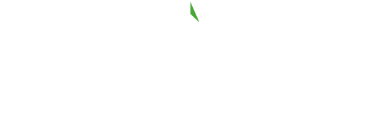 Look North logo
